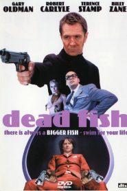 Dead Fish – Πληρωμένο Συμβόλαιο Θανάτου (2005) [αποκλειστική] online ελληνικοί υπότιτλοι